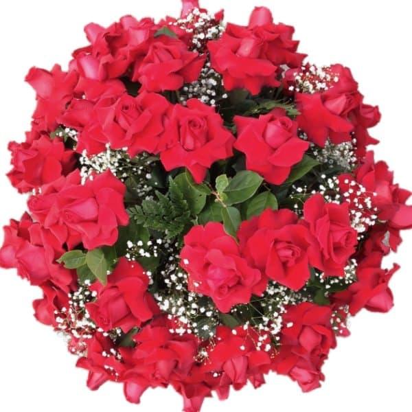 100 roses gallery