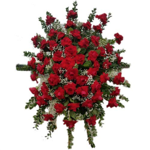 Sympathy arrangement with red roses, and white and green plants