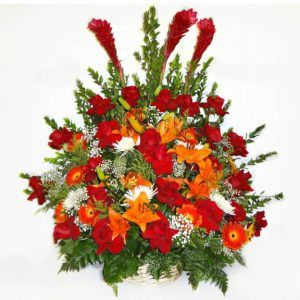 Bouquet in a basket with 24 Roses, 3 Gingers, 3 Lilies, 5 White Spyder Flowers, 8 Gerberas, Baby Breath.