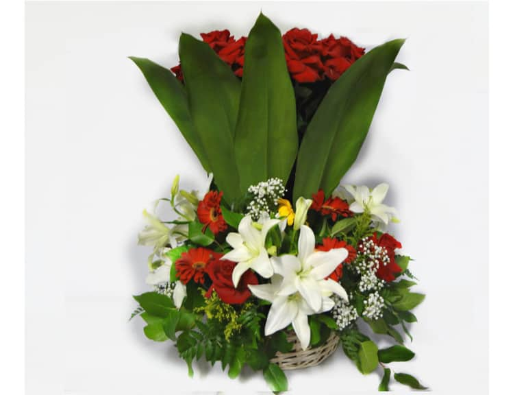 Bouquet in a basket with 24 Roses, 4 Whites Lilies, 10 Gerberas Daisies, Tilips, Baby Breath, Lemon Leaves.