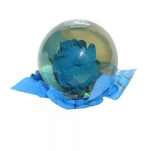 Blue rose inside a spheric bubble of glass filled out with water
