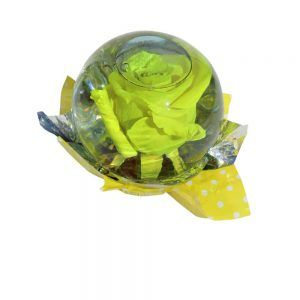 Yellow rose inside a spheric bubble of glass filled out with water