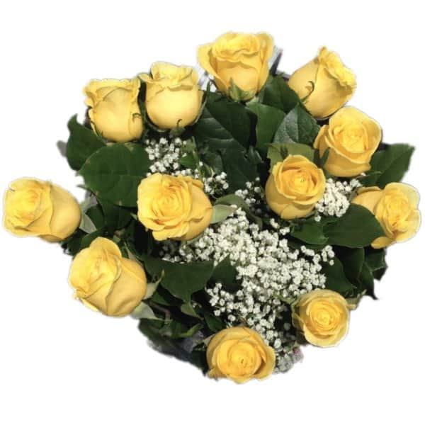 Dozen yellow roses flowers avalon mightylinksfo